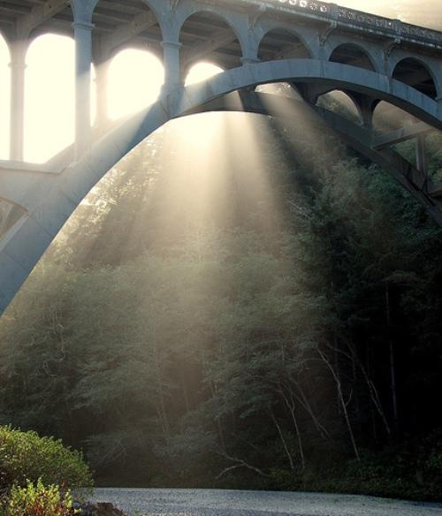 Bridging the Gap by Laurie Buchanan