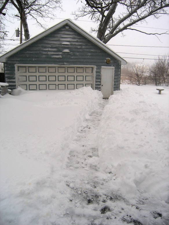 Shoveled path to the garage