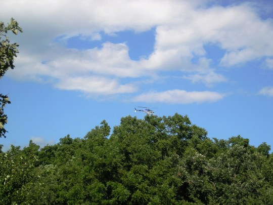 Rising from the lush green tree line I see a helicopter