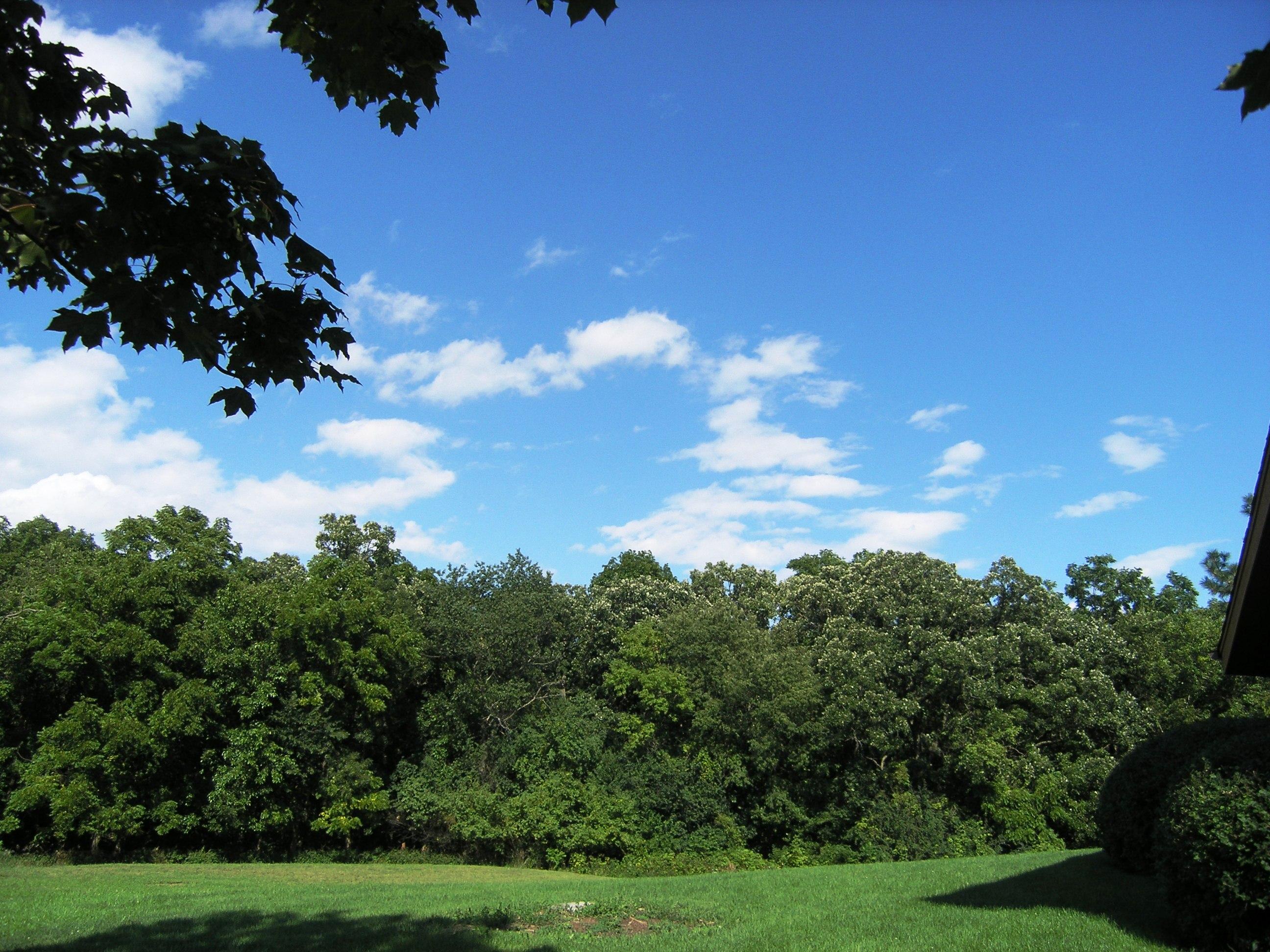 Enjoying a beautiful afternoon at Veteran's Acres Park