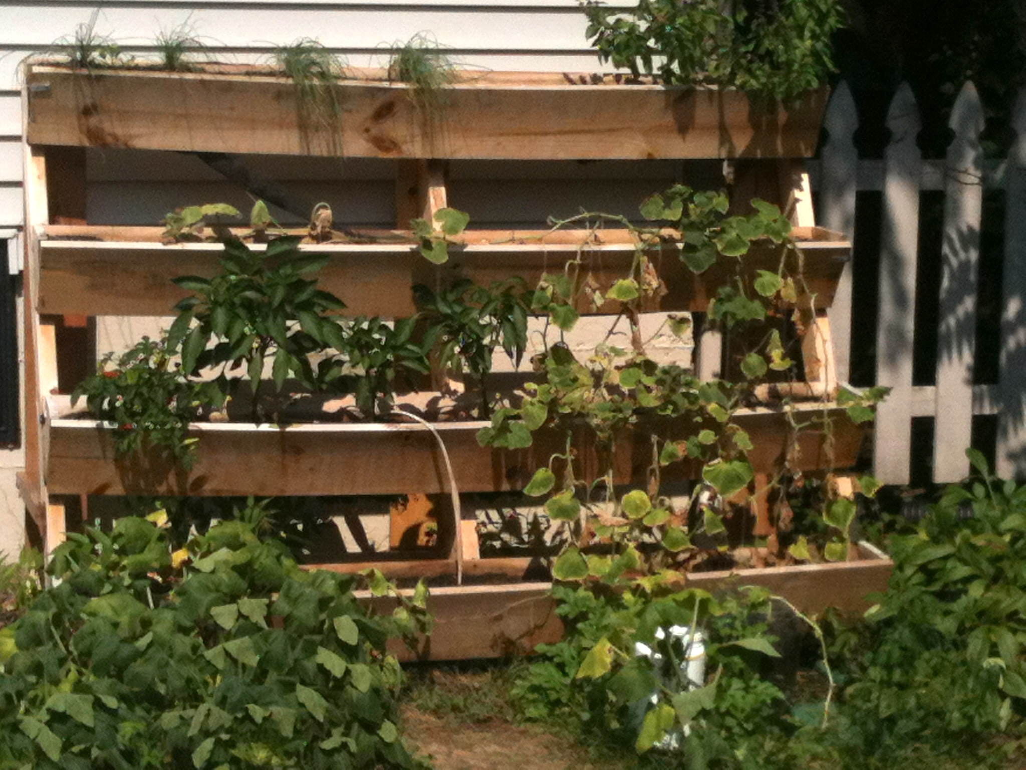 Awesome pallet vertical gardens pallets designs for How to make a vertical garden using pallets